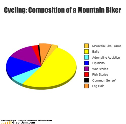 Pie Chart: Composition of a Mountain Biker