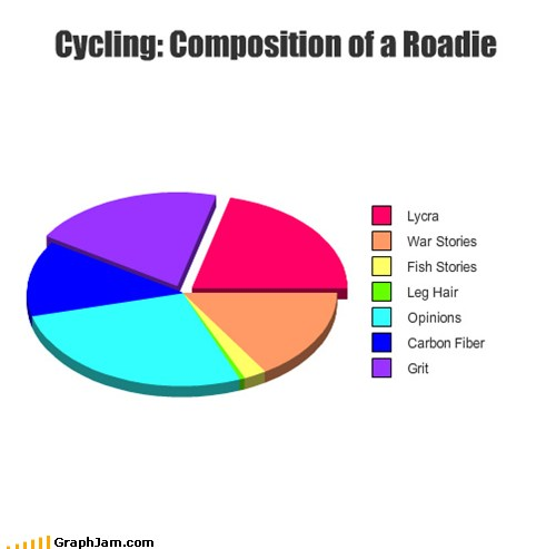 Pie Chart: Composition of a Roadie