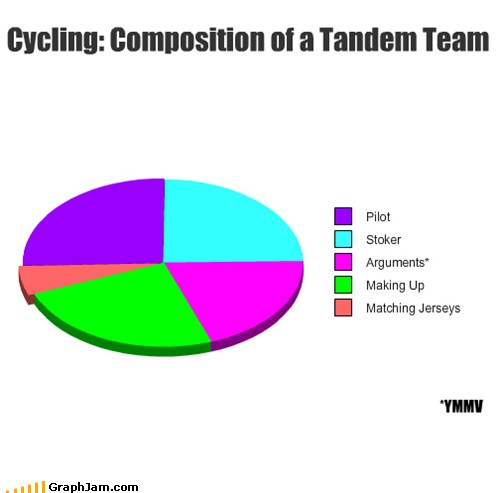 Pie Chart: Composition of a Tandem Team