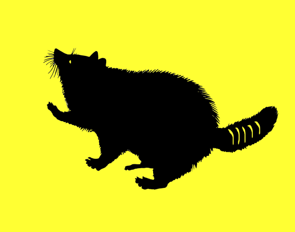 Raccoon of Flanders Flag