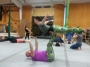 Ballet, Meet Cirque