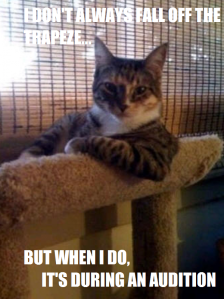 the-most-interesting-cat-in-the-world
